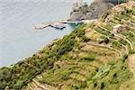 High angle view of ferry in the sea, Ligurian Sea, Italian Riviera, Cinque Terre, La Spezia, Liguria, Italy