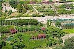 High angle view of a garden, Salerno, Campania, Italy