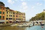 Boats at a harbor, Italian Riviera, Portofino, Genoa, Liguria, Italy