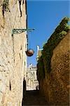 Low angle view of a hanging basket, Le Mans, Sarthe, Pays-de-la-Loire, France
