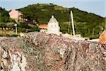 Close-up of a rock with a church in the background, Church of Santa Margherita d'Antiochia, Italian Riviera, Cinque Terre National Park, Vernazza, La Spezia, Liguria, Italy