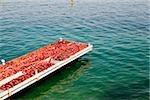 Fishing net on a pier, Bay of Naples, Capri, Sorrento, Sorrentine Peninsula, Naples Province, Campania, Italy