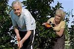 Jardinage couple senior