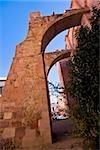 Ruins of a church, Ex Templo De San Agustin, Zacatecas, Mexico
