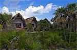 Hütten am Cayo Largo, Kuba