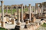 Overview of Hadrianic bath, Leptis Magna, UNESCO World Heritage Site, Libya, North Africa, Africa
