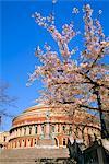 The Royal Albert Hall, Kensington, London, England, UK