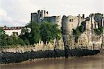 Château de Chepstow, Gwent, pays de Galles, Royaume-Uni, Europe