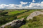 Northumberland National Park near Otterburn, Northumberland, England, United Kingdom, Europe