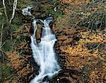 Waterfall, Kenmore, Perthshire, Tayside, Scotland, United Kingdom, Europe