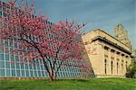 Contraste architectural au Metropolitan Museum, Manhattan, New York City, États-Unis d'Amérique, Amérique du Nord