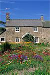 Stone Cottage und bunten Garten am neuen Grimsby auf Tresco in den Scilly-Inseln, England, Vereinigtes Königreich, Europa