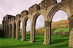 Ruins of Llanthony Priory, Vale of Ewyas, Black Mountains, Gwent, Wales, United Kingdom, Europe