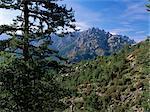 Col du Bavella, Corse, France, Europe
