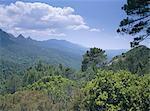 Montagnes, île de Corse, France, Europe