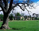 Jervaux Abbey near Masham, North Yorkshire, Yorkshire, England, United Kingdom, Europe