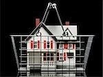 maison en vente dans un panier d'achat