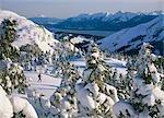 Cross Country Skiing on Douglas Island Southeast AK