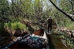 Adult woman takes a water portage canoe trip on the Swan Lake Canoe Trails in Kenai National Wildlife Refuge Kenai Peninsula Alaska