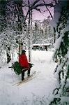 Homme portant des arbres de Noël et d'une hache bois neige hiver cabine Centre-Sud Alaska