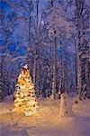Bonhomme de neige avec bonnet de pendaison des ornements sur un arbre de Noël dans une neige couverte de forêt de bouleau dans le centre-sud de l'Alaska