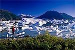Colony Glacier Summer Chugach Mountains Southcentral Alaska w/ & w/o person