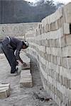 Man Building a Brick Wall, Chapagaon, Nepal