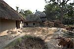 Namkhana Village, South 24 Parganas District, West Bengal, India