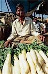 légumes produisent décrochage, Jaipur, Rajasthan, Inde.