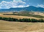 Landscape,Tuscany,Italy