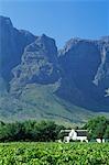 Maison coloniale dans champ, Western Cape, Afrique du Sud