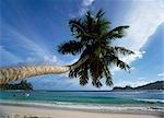 Baie Lazar,mahe,Seychelles