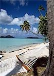 Hamac et palm tree - Pearl Beach, Bora Bora, Polynésie française.