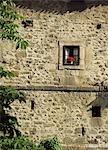 Geraniums in a window of house in Potes,Picos de Europa,Spain