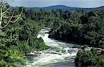 The River Nile,Jinja,Uganda