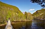 Hängebrücke, Rago-Nationalpark, Norwegen