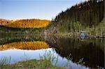 Szenische Ansicht, Borge-Fjellet, Norwegen