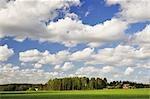 Domaine et ferme, Tiveden, V Northern ttern, Suède