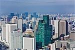 Tokyo, Kanto Region, Honshu, Japan