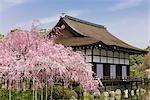 Sanctuaire Heian-Jingu, Kyoto, Japon