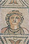 Mosaic, Volubilis, UNESCO World Heritage Site, Morocco, North Africa, Africa