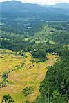 Mountains and valley, Toraja area, Sulawesi, Indonesia, Southeast Asia, Asia