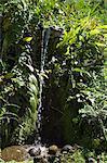 Petite chute d'eau près de Arenal, Costa Rica Amerique centrale