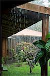 Pluies torrentielles, Parc National de Tortuguero, côte caraïbe, Costa Rica, Amérique centrale