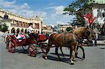 Chevaux et carrosses à la place du marché (Rynek Glowny), vieille ville (Stare Miasto), Krakow (Cracovie), patrimoine mondial de l'UNESCO, Pologne, Europe