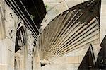 Detail of shell symbol of the pilgrimage, Santiago Cathedral from Plaza de Las Platerias, Santiago de Compostela, Galicia, Spain, Europe