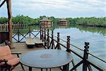 Makasutu Eco Lodge near Banjul, Gambia, West Africa, Africa