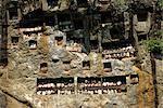 Tombes de falaise Lemo, zone de Toraja, Sulawesi, Indonésie, Asie du sud-est, Asie