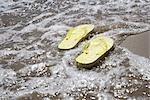Flip Flops in Surf, Hulsig, Skagen, Nordjylland, Jutland Peninsula, Denmark