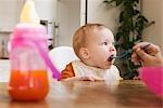 Parent alimentation bébé